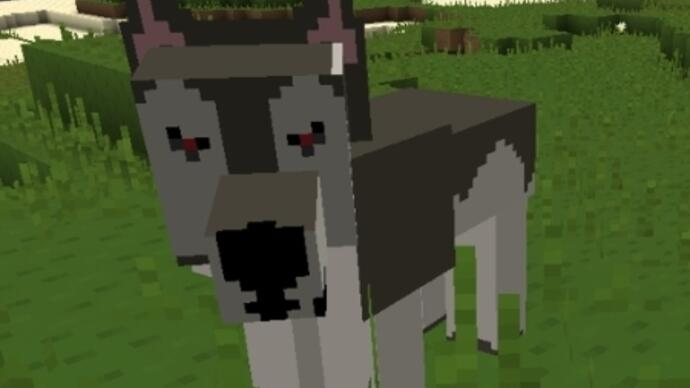 """Minecraft 1.4.1 patch fixes """"wet wolves looking way tooscary"""""""