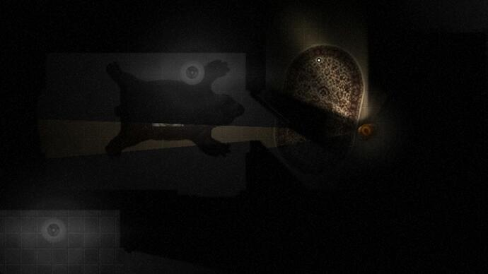 Spooky survival horror roguelike Darkwood launches its Indiegogo campaign