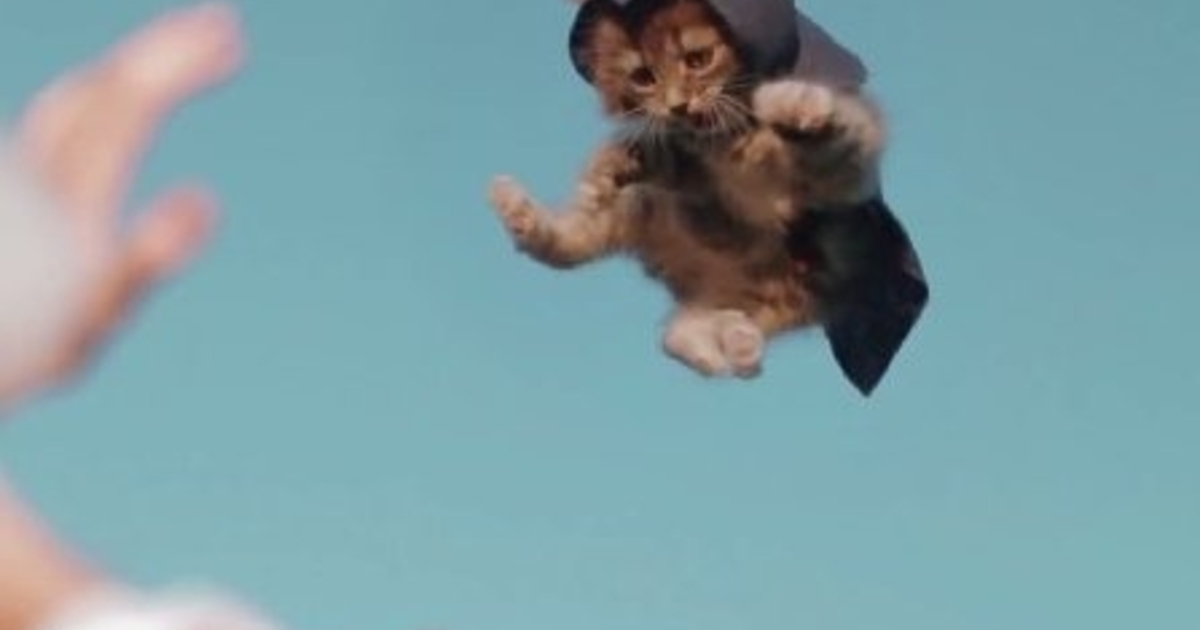 Watch Assassin's Creed recreated with cats