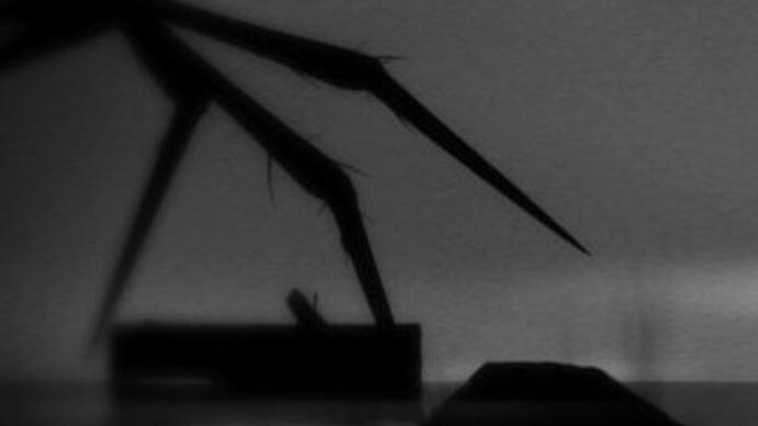 Limbo launches on Xbox One free for earlyadopters