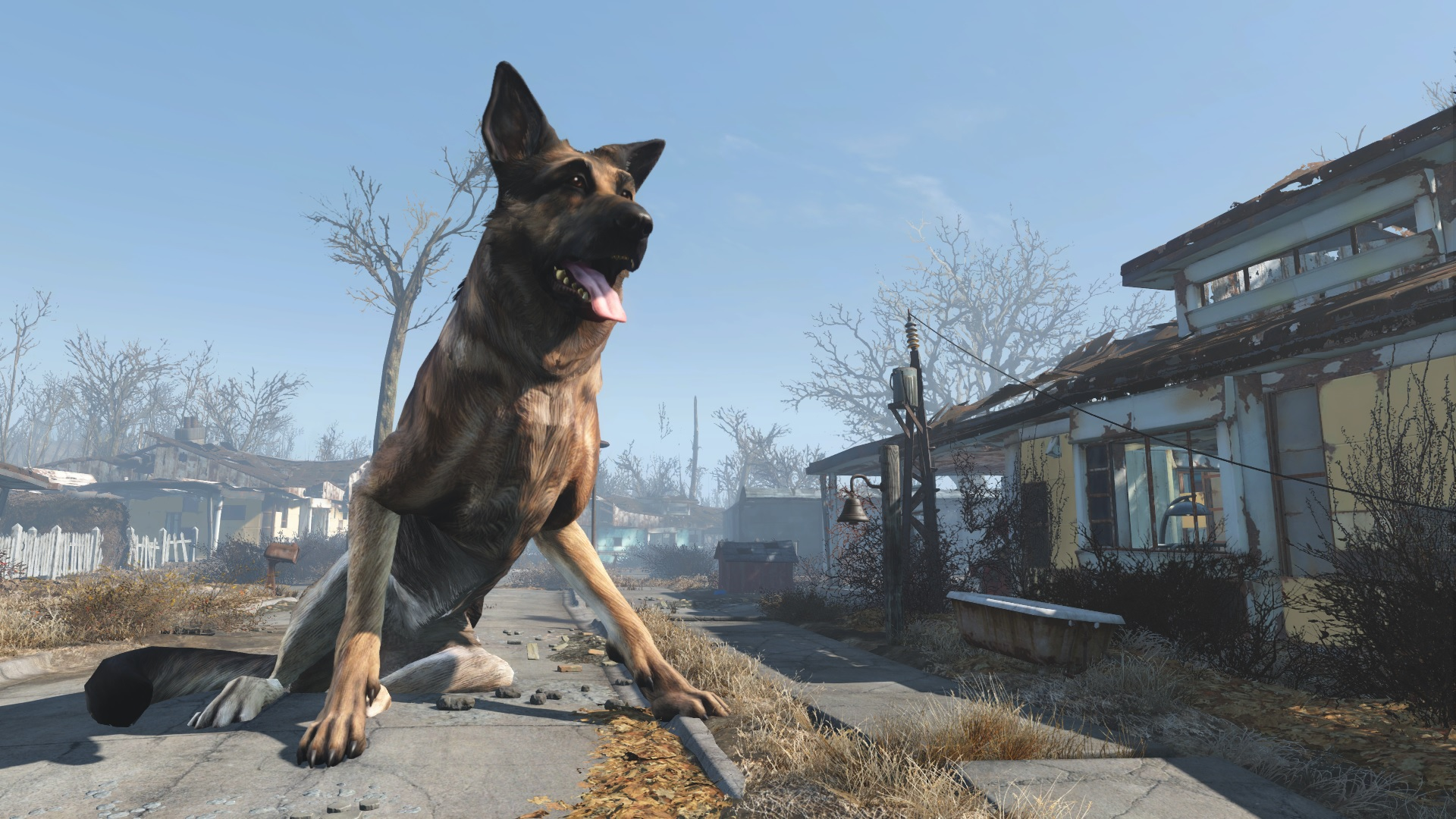 Best Dog Armor Fallout