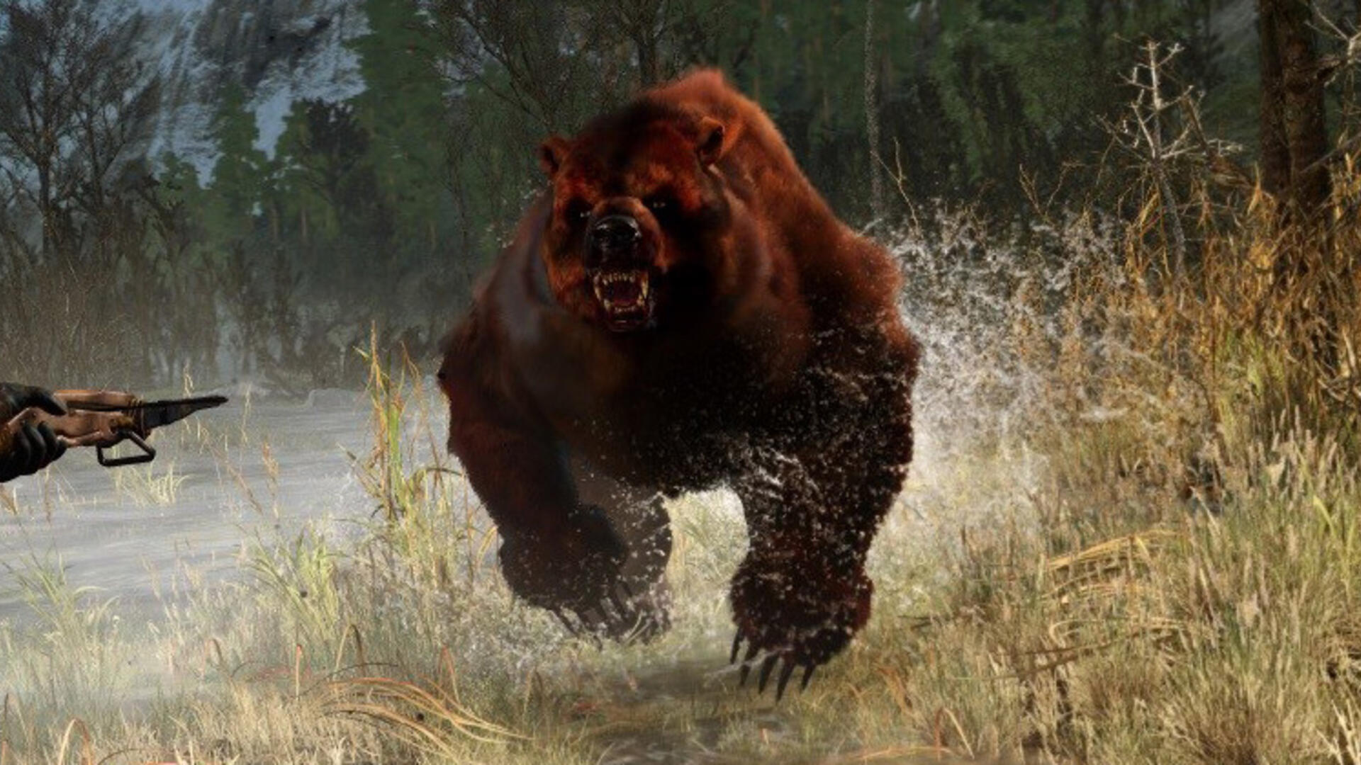 The Witcher 3 Bear School Armor - Where to Find the Ursine School Gear