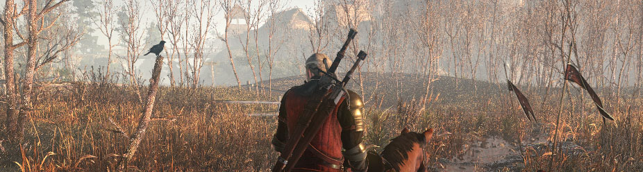 The Witcher 3: All White Orchard Witcher Contracts Guide