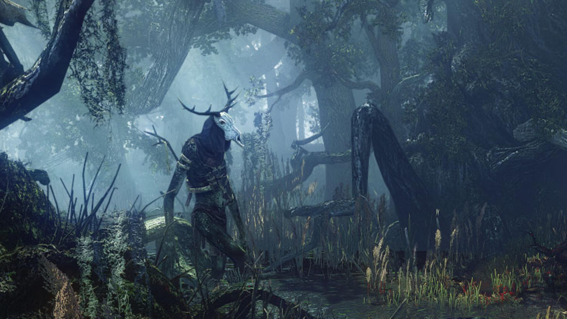 The Witcher 3: All Velen Witcher Contracts - Jenny 'O the Woods Walkthrough
