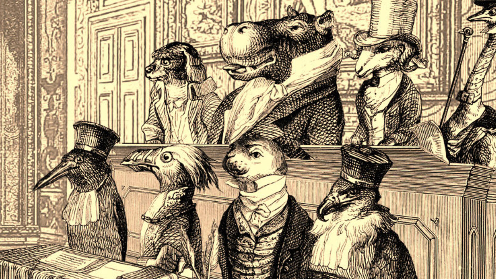 Aviary Attorney PC Review: Fowl Play