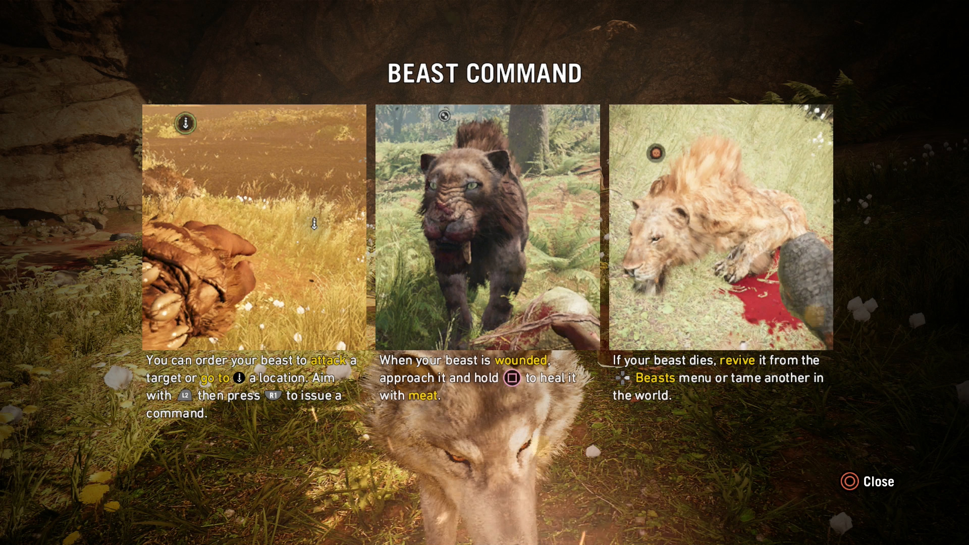 Far Cry Primal How To Get The Owl And White Wolf Usgamer