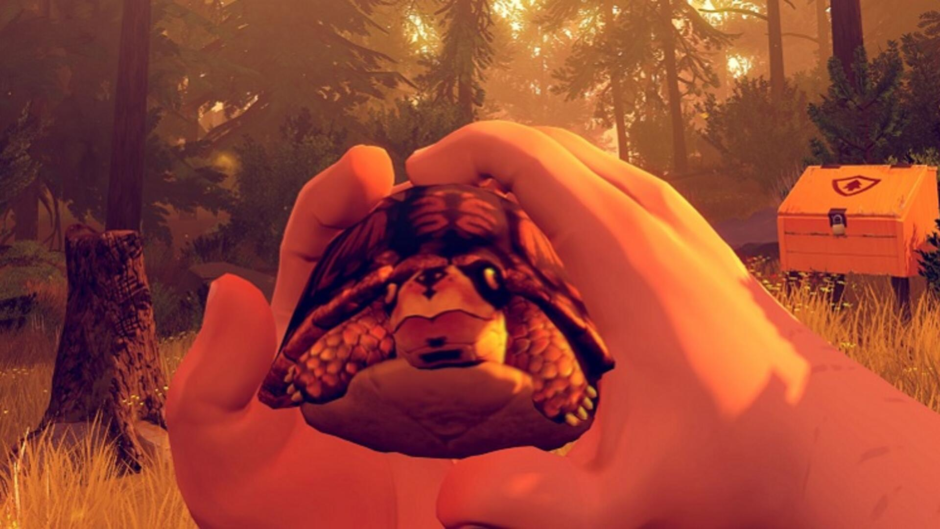 Firewatch - How to Find a Turtle Pet