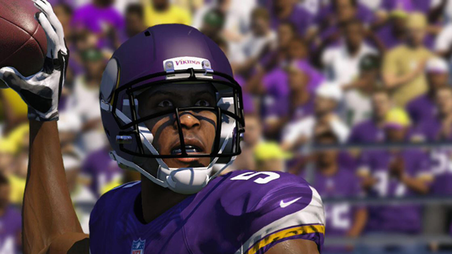 Sometimes Sports Games Are All You've Got When You're a  Minnesota Vikings Fan