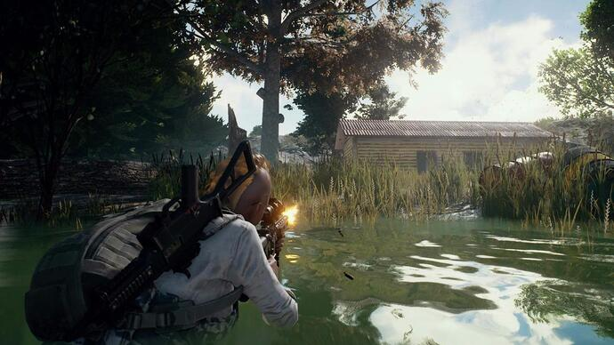 PlayerUnknown's Battlegrounds sells 1m copies after two weeks in Early Access