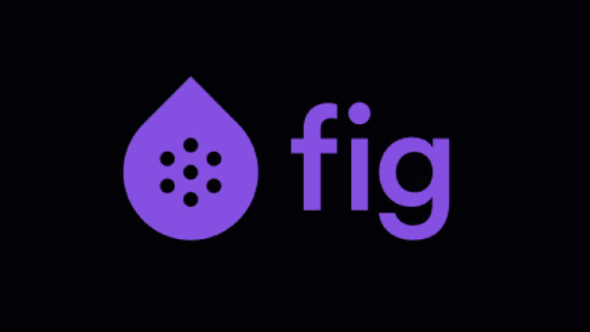 Fig Also Promises To Help Indies With Steam Direct