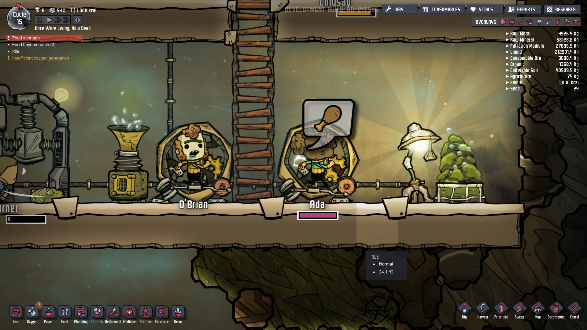 You Should Be Playing Oxygen Not Included: A Simplified