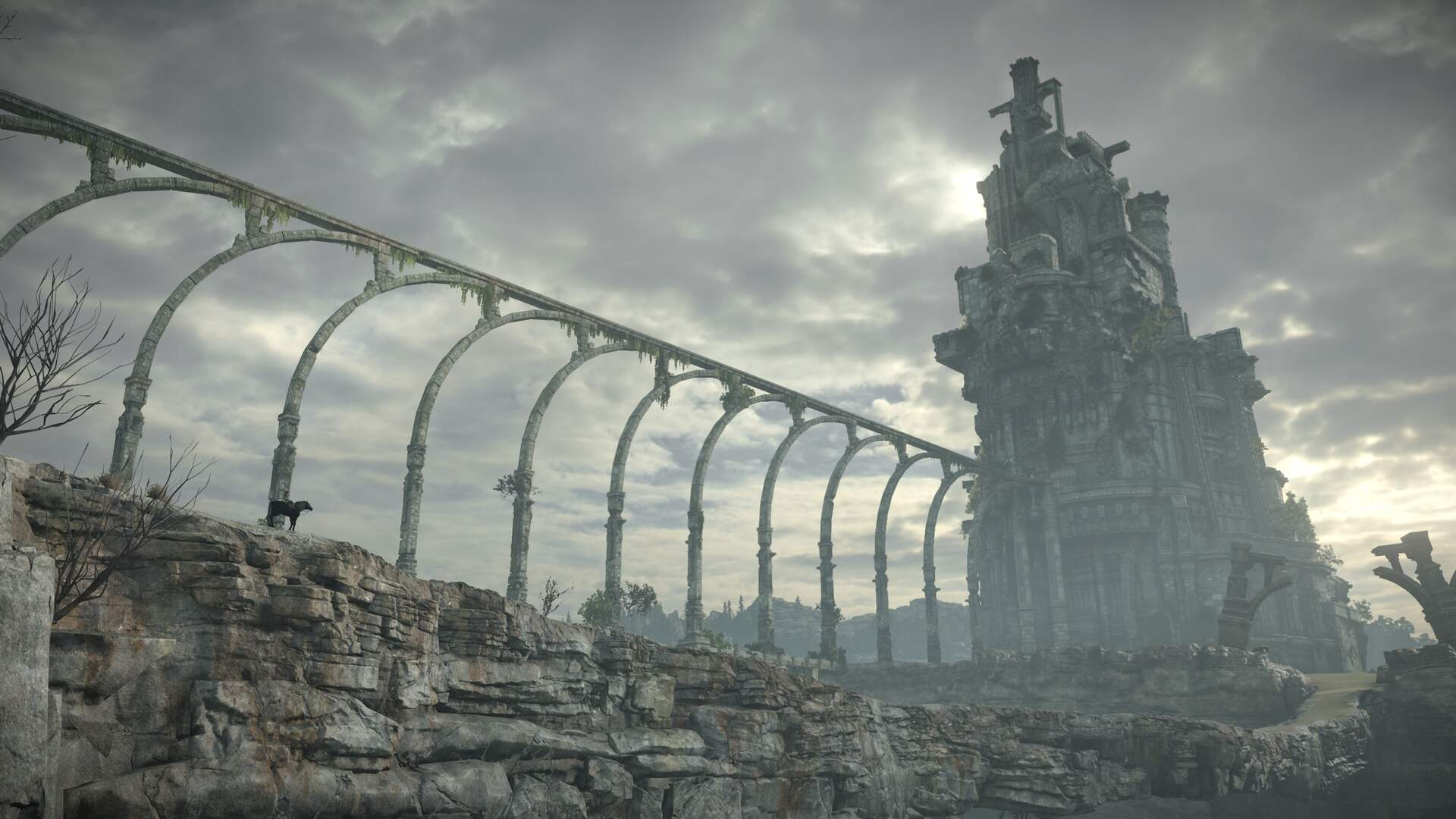 The Shadow Of The Colossus Remake Hasn T Changed As Much As You