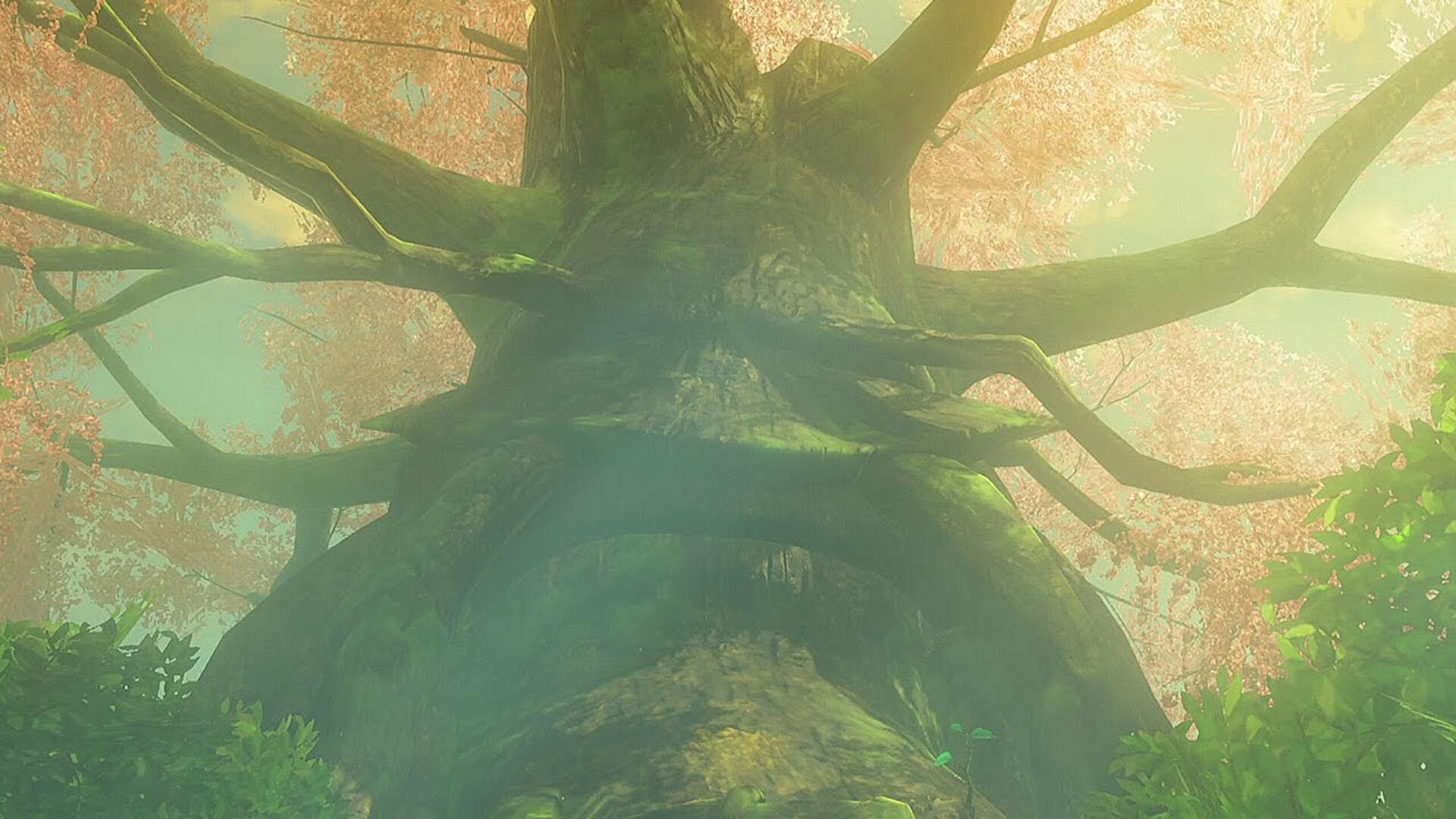 Here S A New Shortcut To Breath Of The Wild S Korok Forest Usgamer