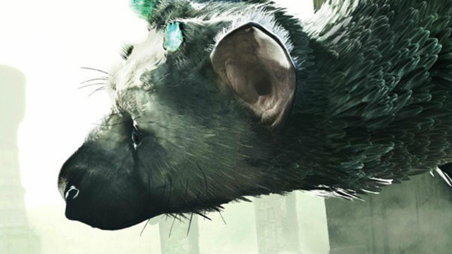 Black Friday Sale Lists The Last Guardian for $15 at Target