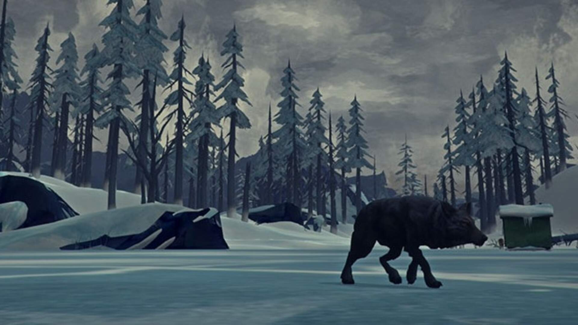 The Long Dark Guide - Essential Items to Survive, Wolf Attacks, Hunger, Thirst, Tips