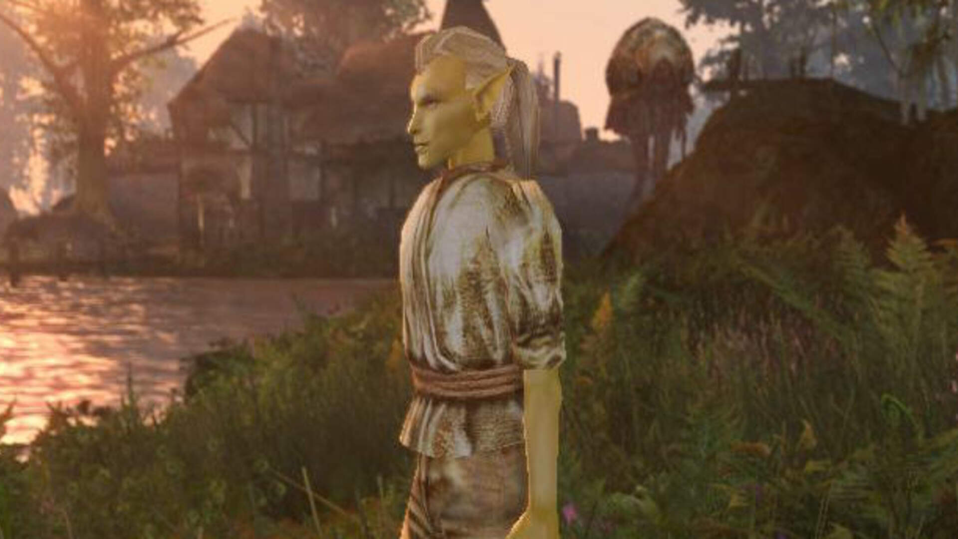 Let's Put Morrowind Remastered on the Nintendo Switch Instead of Skyrim Remastered