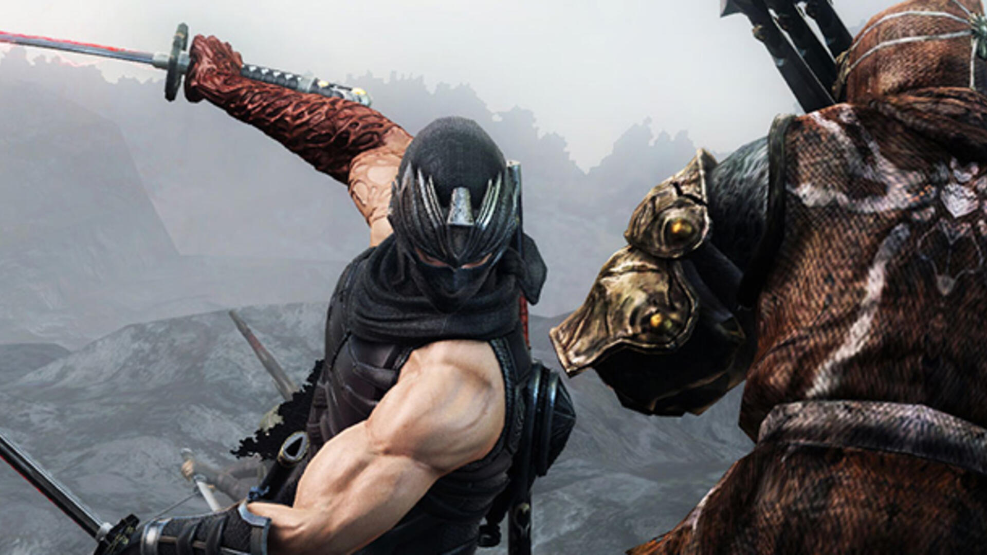 Team Ninja Ninja Gaiden Needs To Be In The Shadows For A While