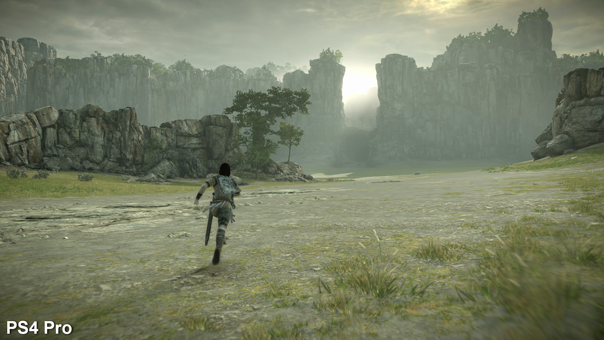 the making of shadow of the colossus on ps4  u2022 eurogamer net