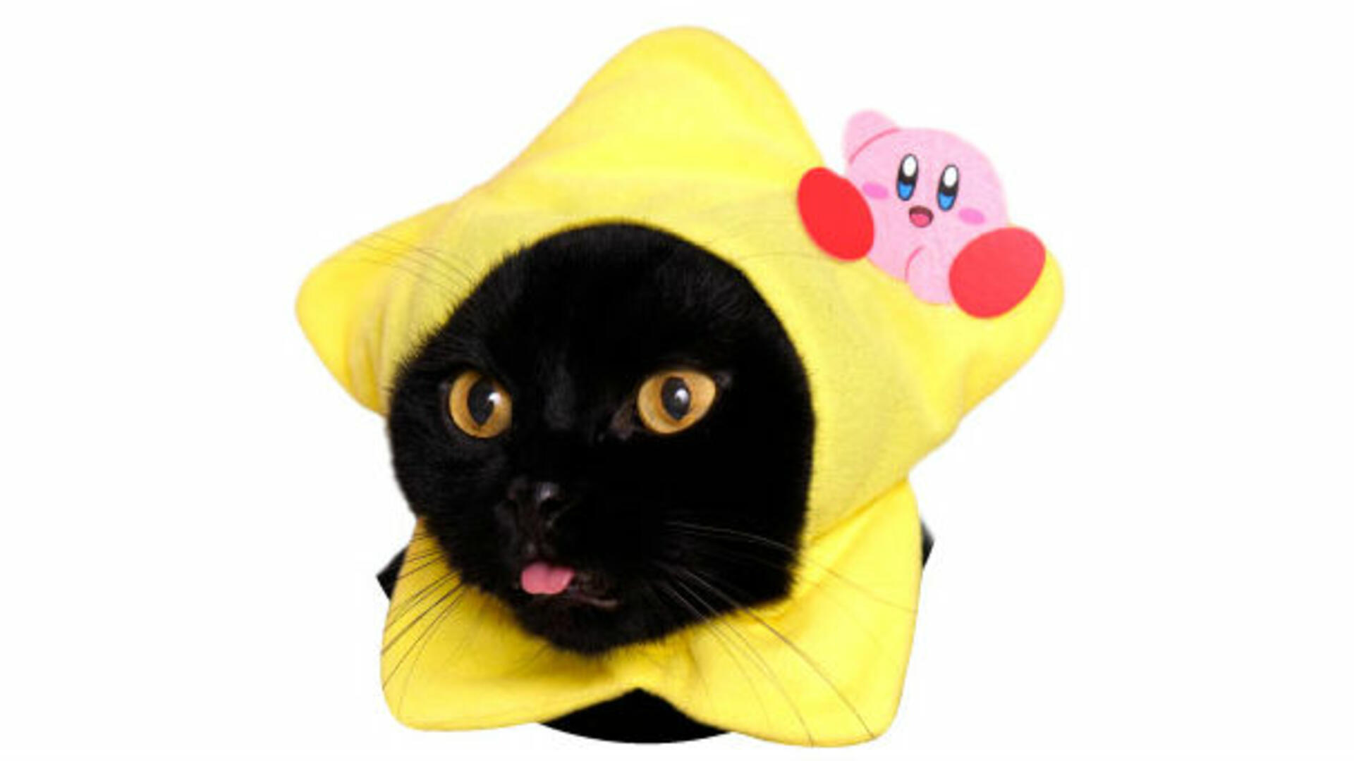 Japan Has Kirby Hoods for Cats. Let's Rate Them