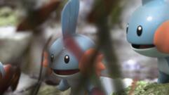 Pokemon Company Appears to be Making Another Mobile Game