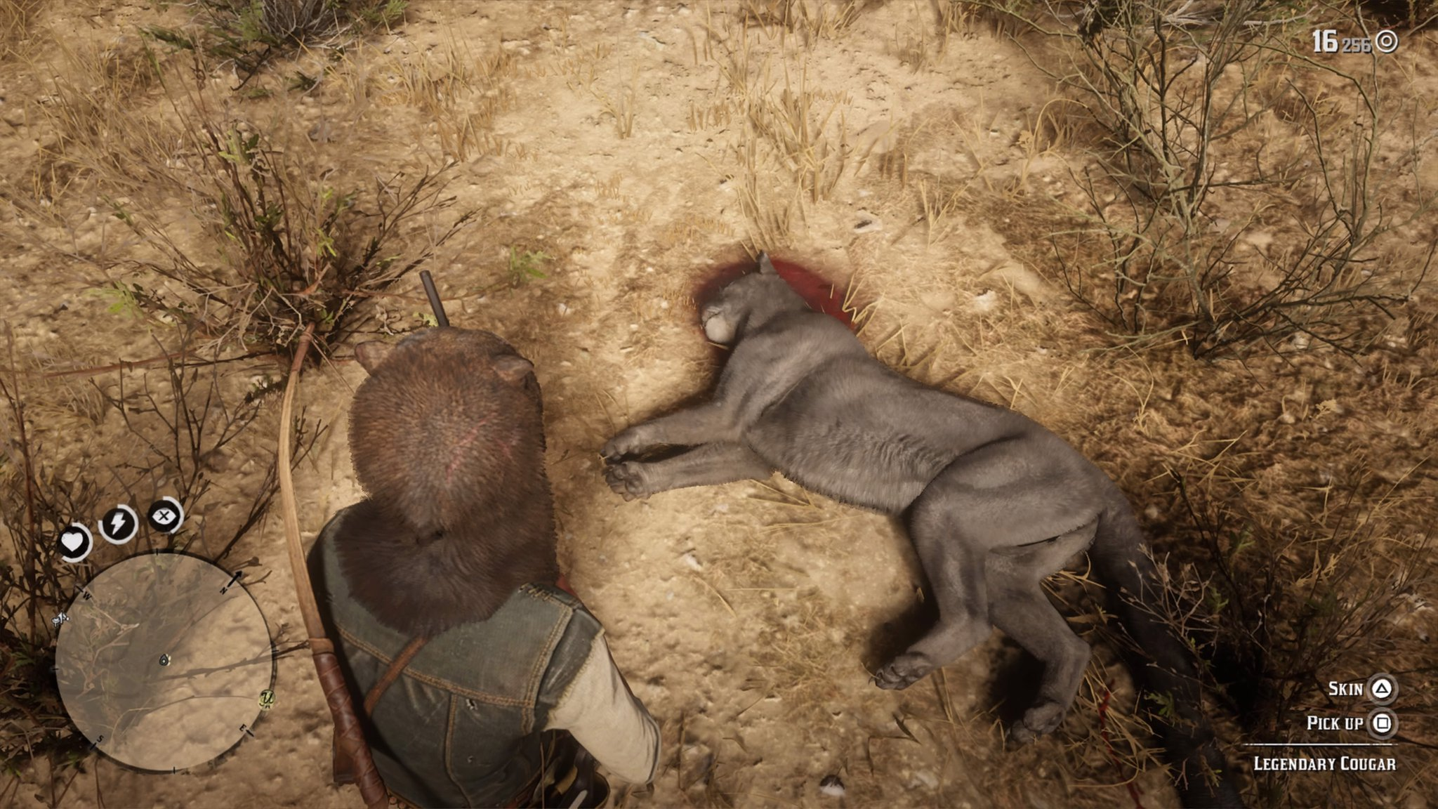 Red Dead Redemption 2 Legendary Cougar Location - How to Get the