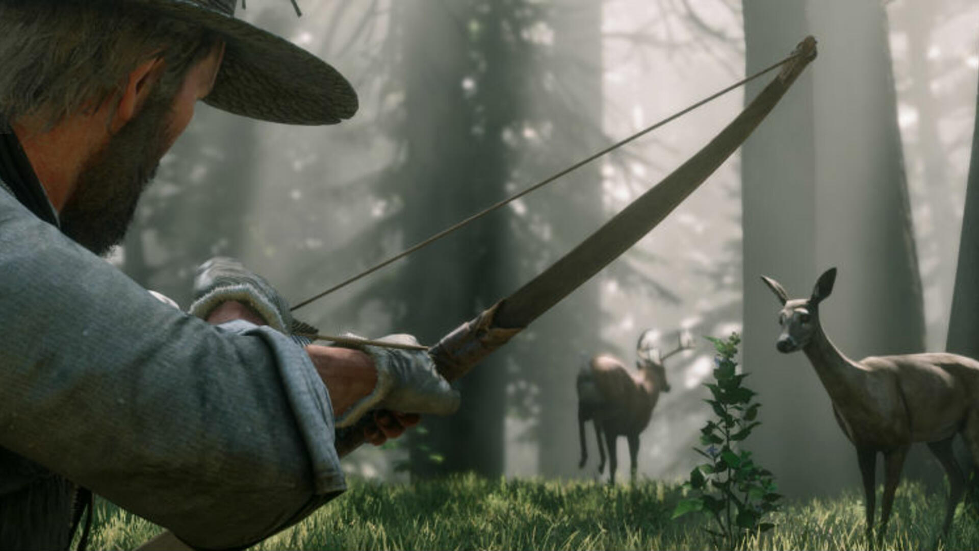 There's Some 200 Animal Species in Red Dead Redemption 2, All of Which Can Probably Kill You