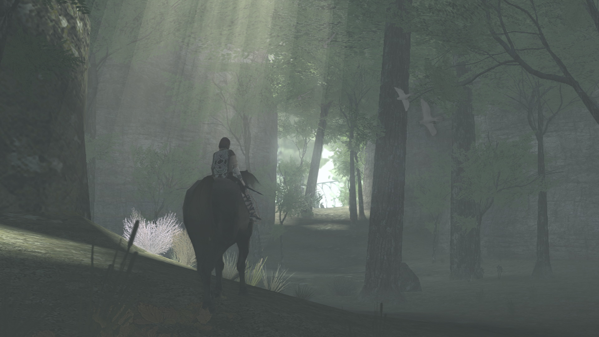 shadow-of-the-colossus-ps3_3.jpg