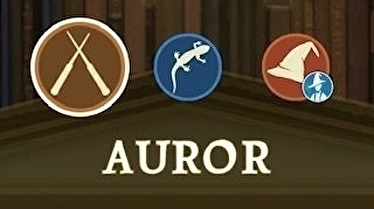 Harry Potter Wizards Unite - Professions: Which Profession is best