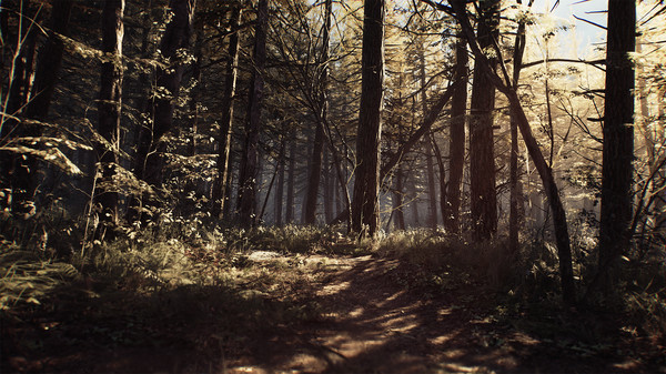 Blair Witch Game Endings: How to Get the Good, Bad and