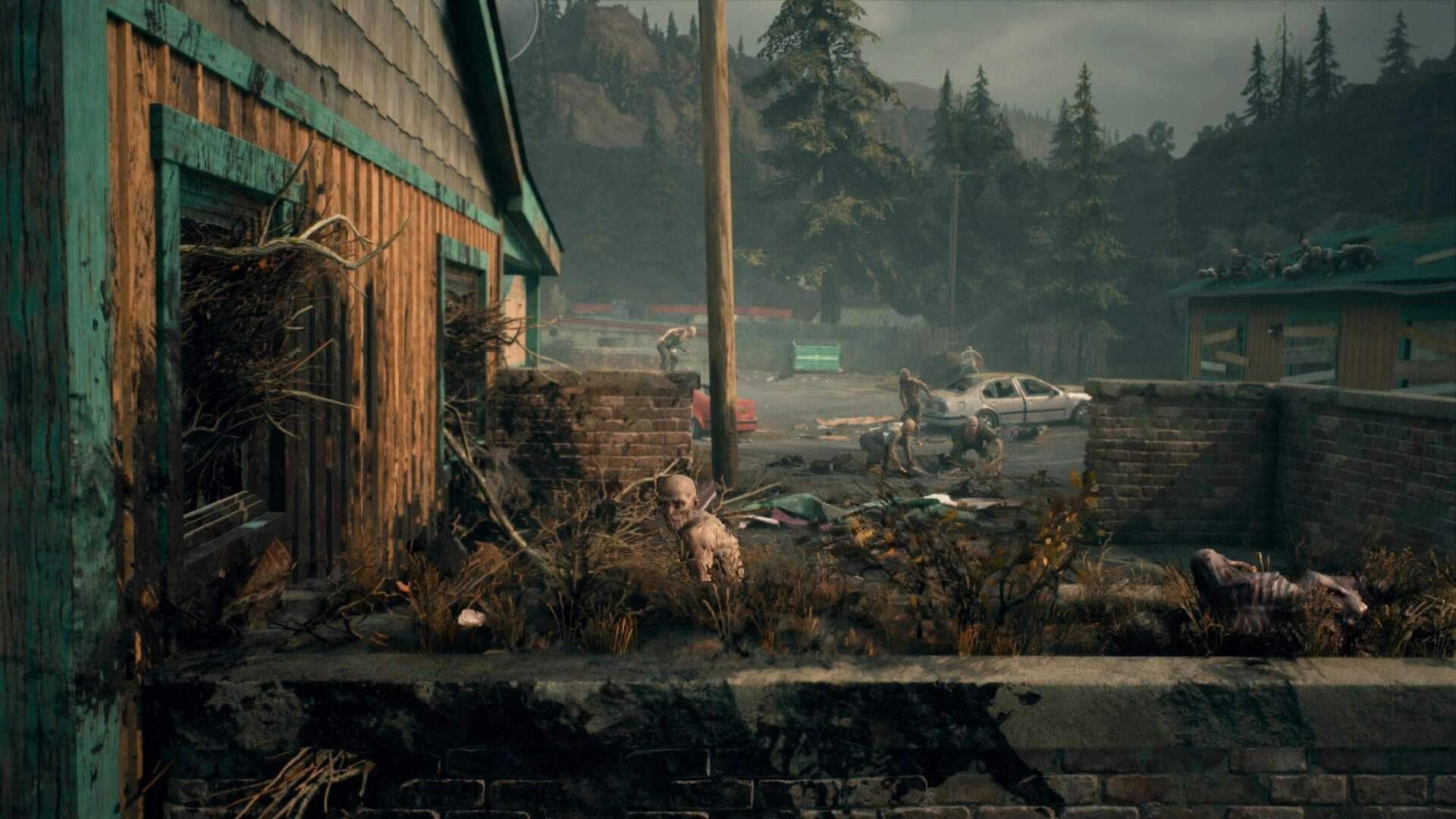 Does Days Gone Have Multiplayer?