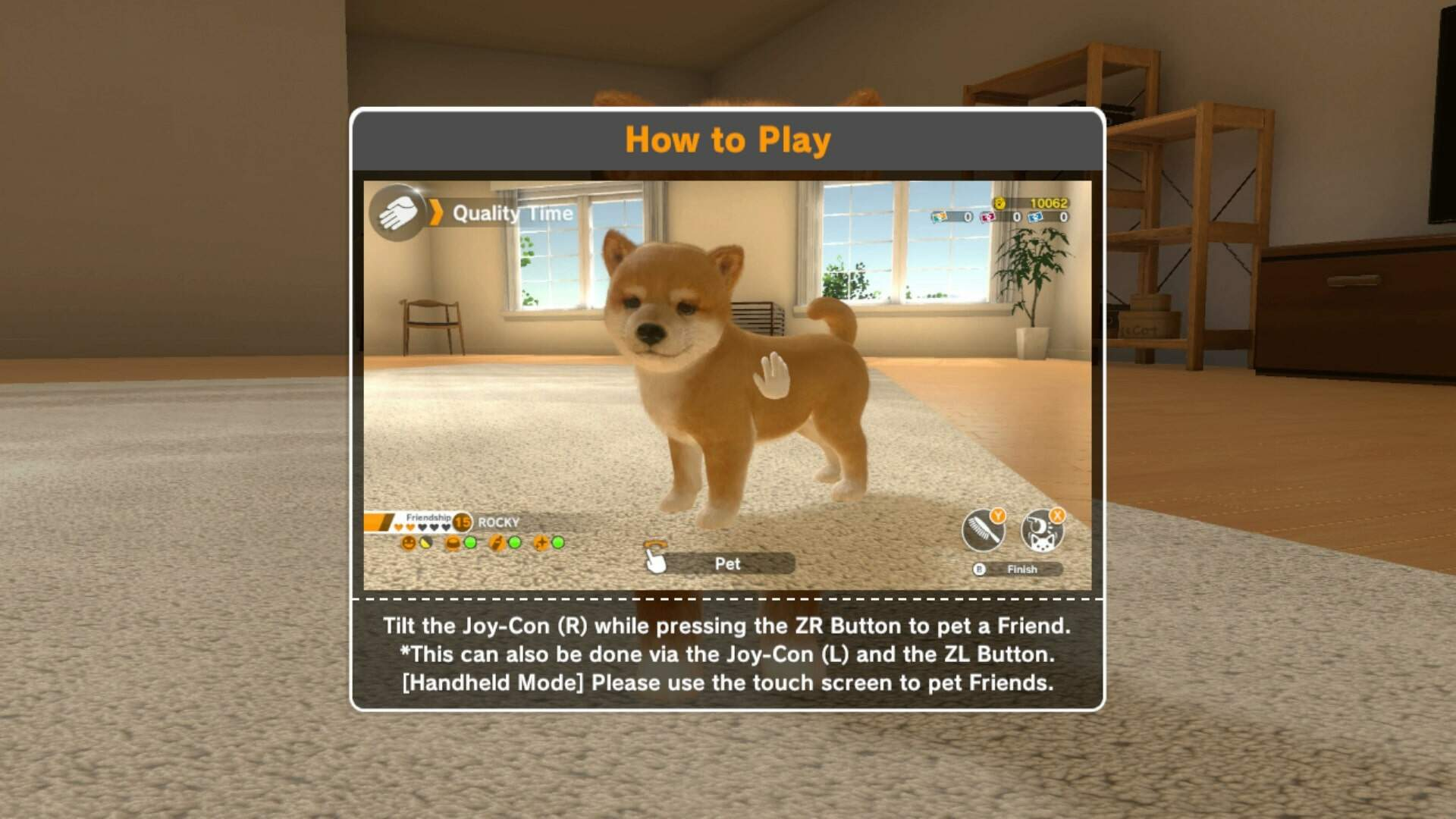 Little Friends Dogs and Cats: Cats List, Breeds, How to Search For a Cat