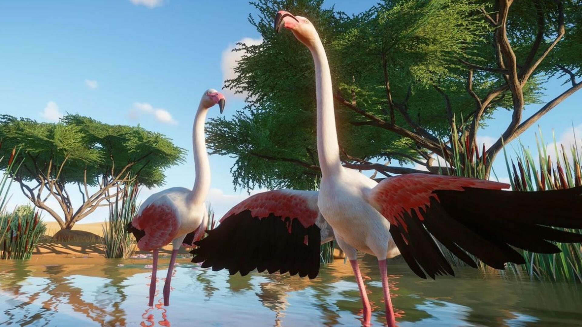 Planet Zoo: Is It Coming to Xbox One?