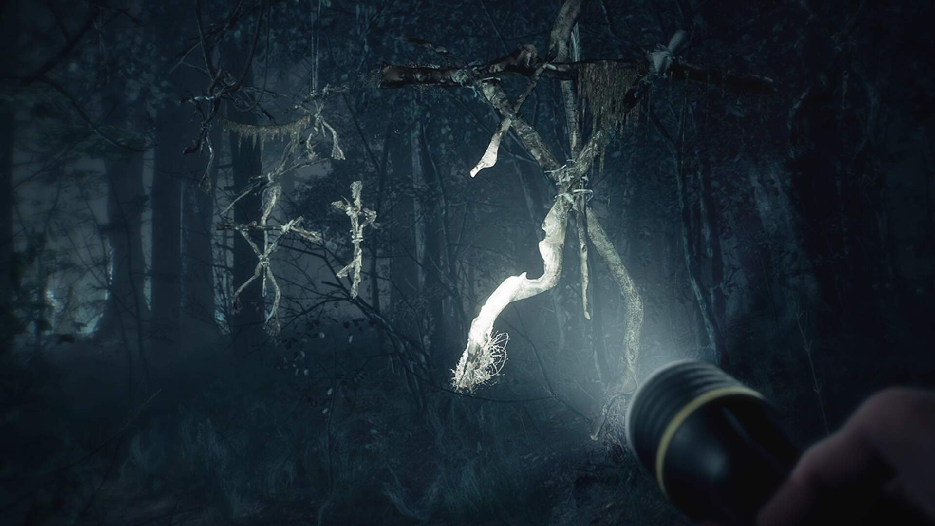 Blair Witch and its Very Good Dog Are Coming to PS4 Next Month