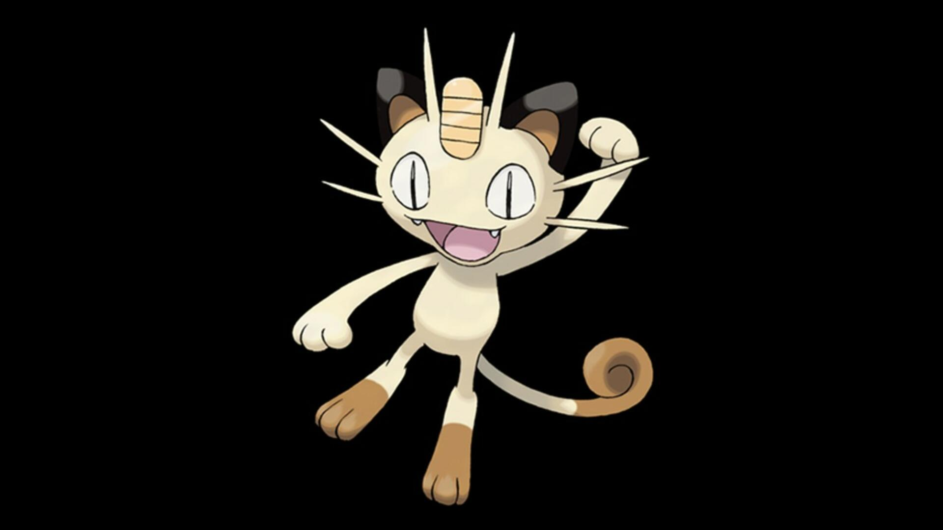 The Only Pokemon Halloween Costume that Matters is This Chonky Cat as Meowth