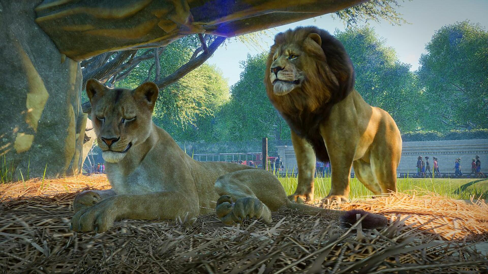 Planet Zoo is a Sim From the Creators of Planet Coaster in the Style of Zoo Tycoon