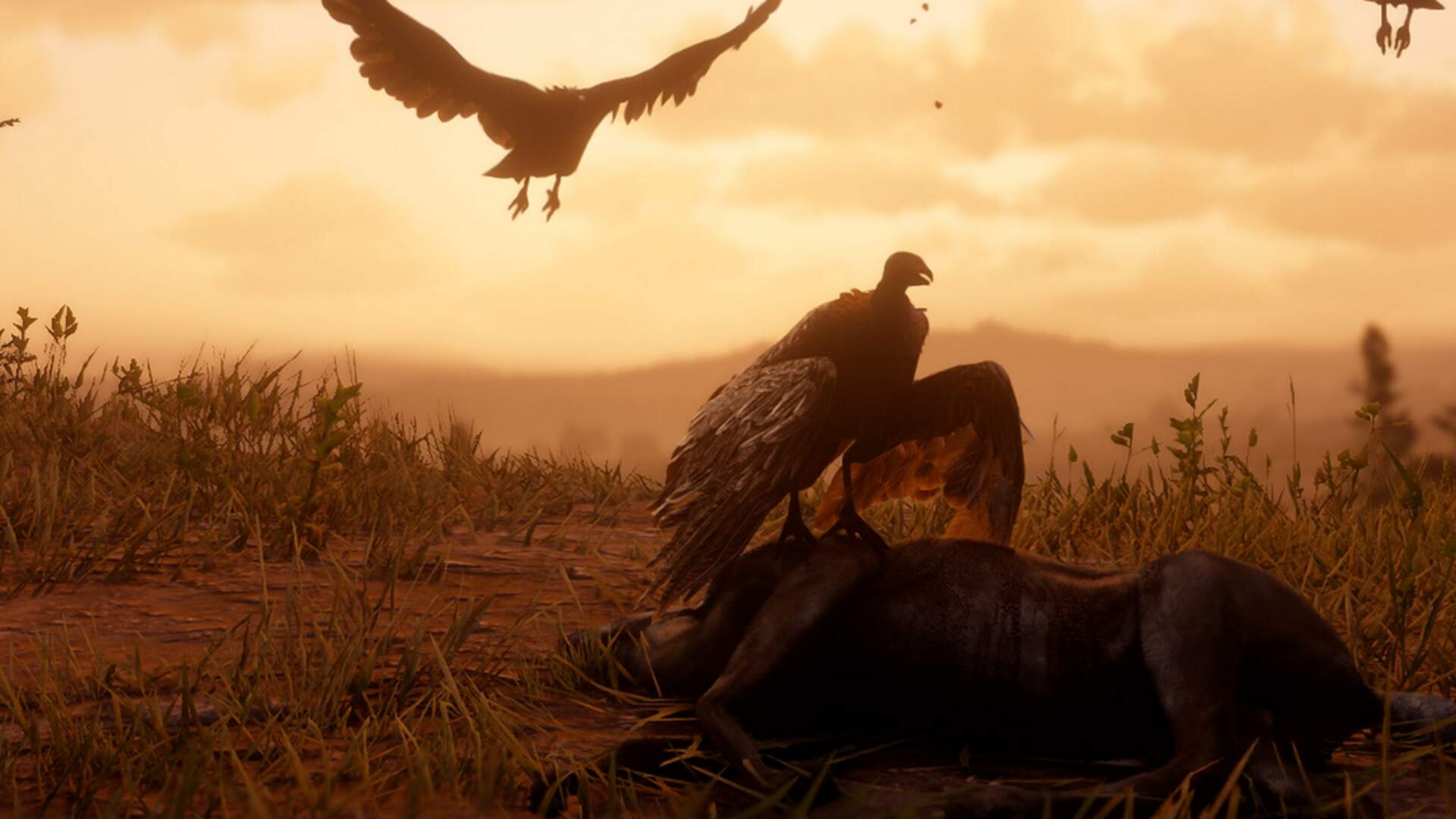 Professional Bird Watcher Gives a Fascinating Review of Red Dead Redemption 2's Wildlife