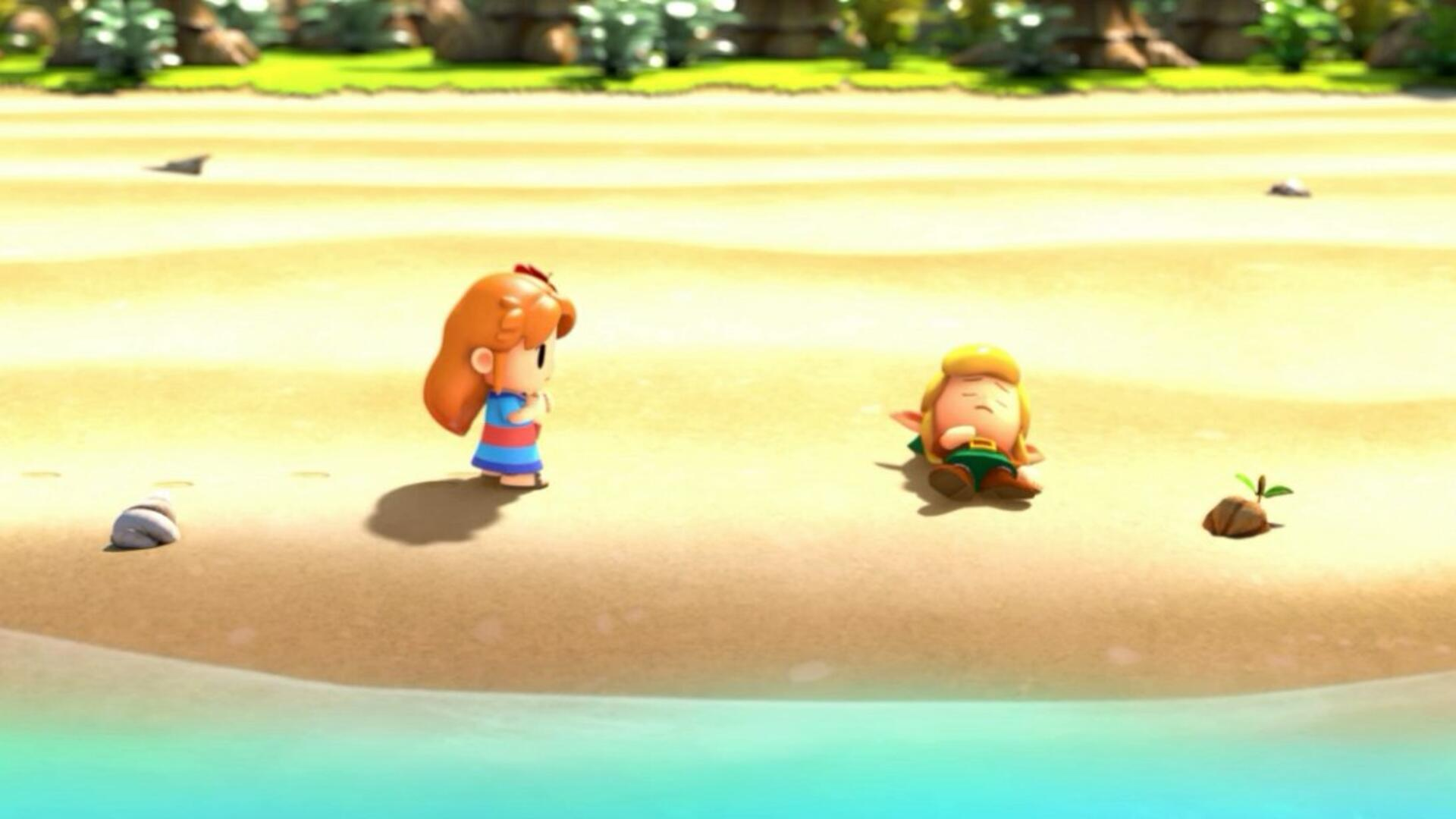 Zelda Link's Awakening Mysterious Forest - How to Get Past the Raccoon and Find the Tail Key