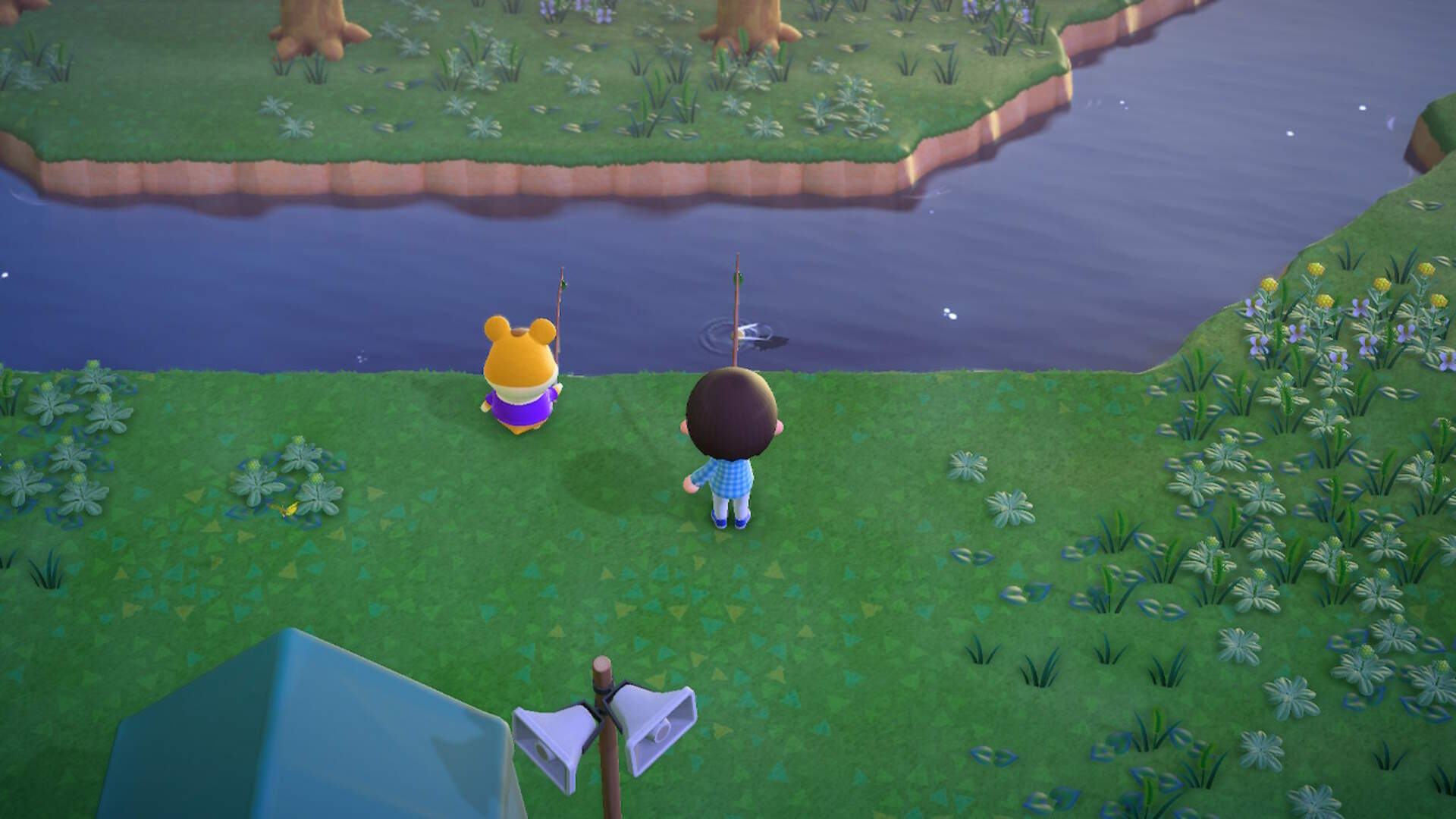 Animal Crossing New Horizons: How to Change the Camera Angle
