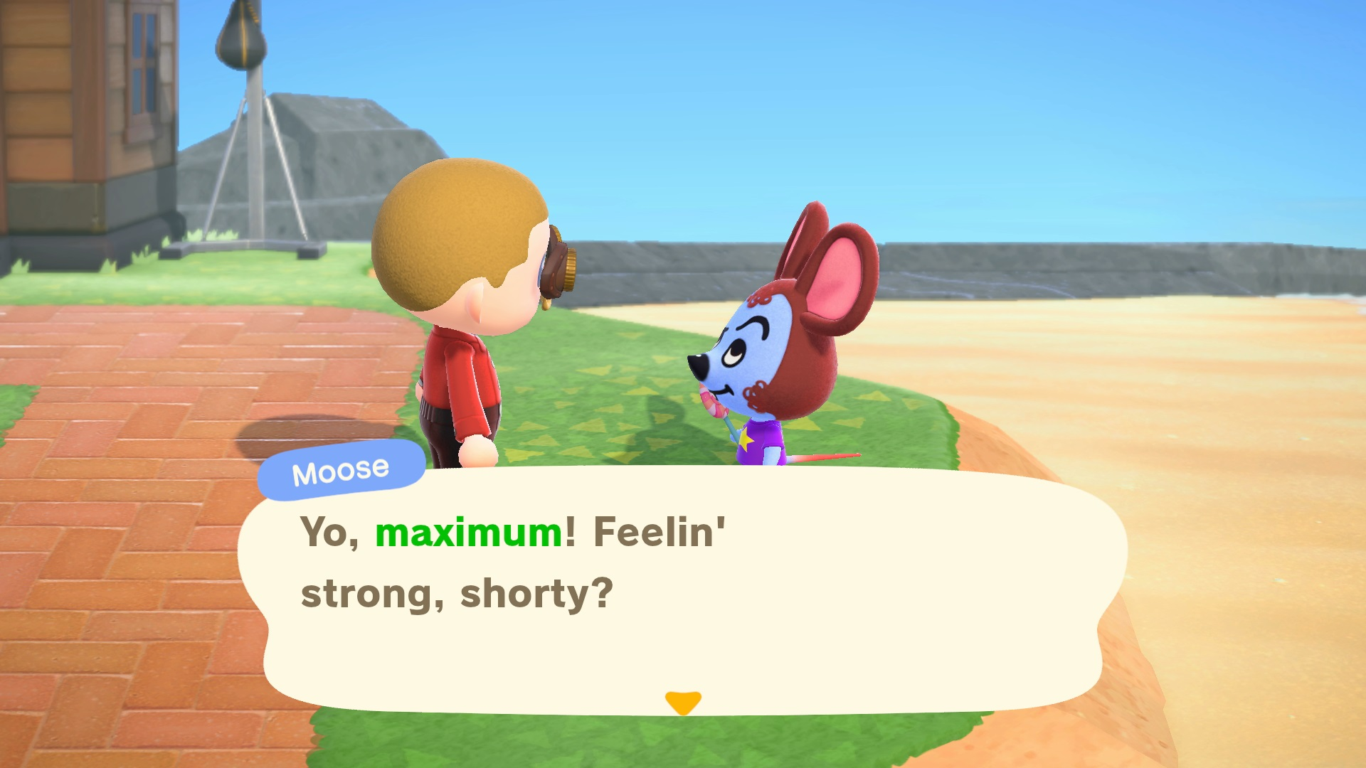 Animal Crossing New Horizons How To Change Nicknames Usgamer