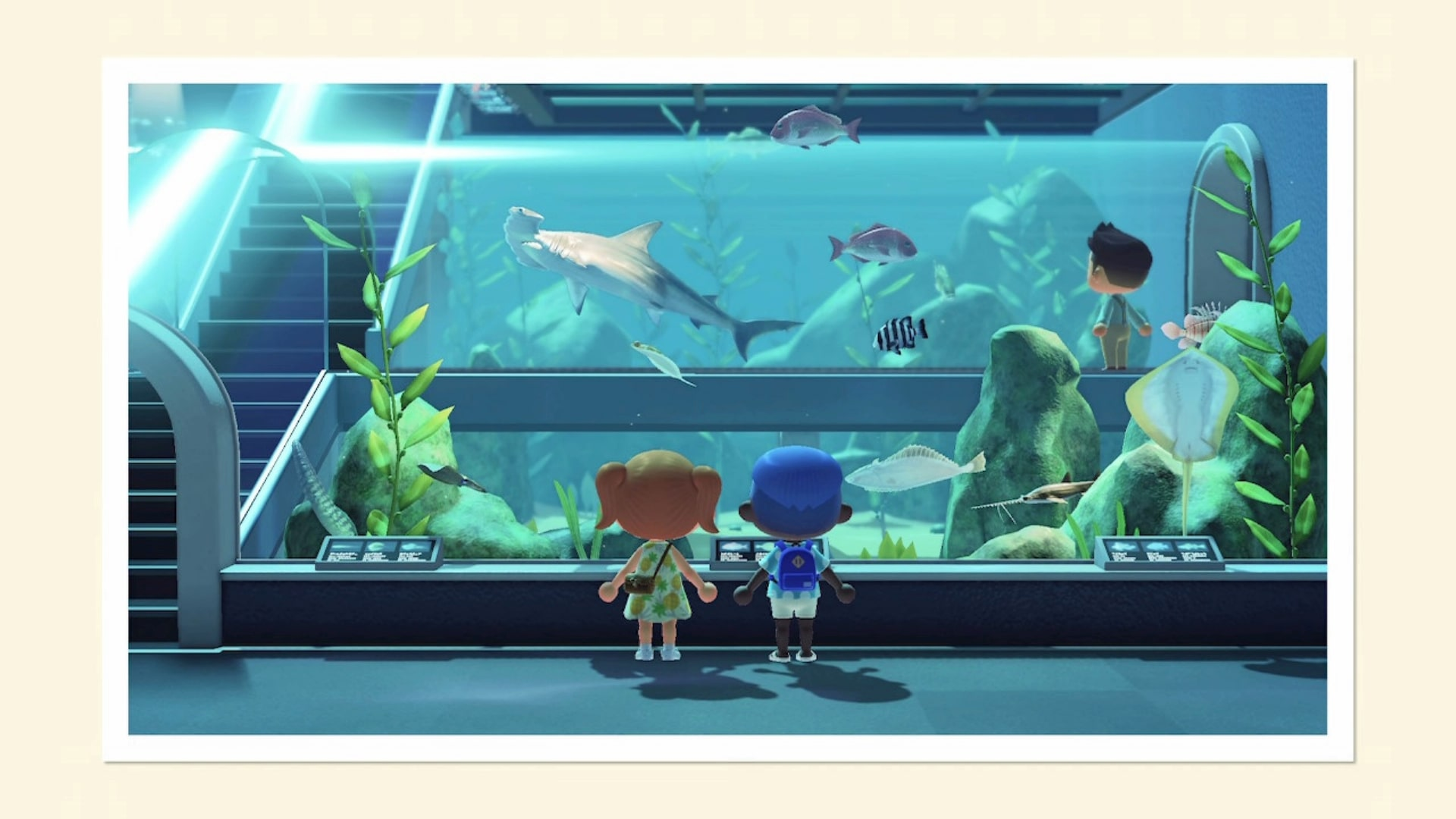 Animal Crossing New Horizons How To Get A Fishing Rod And Catch Fish Usgamer