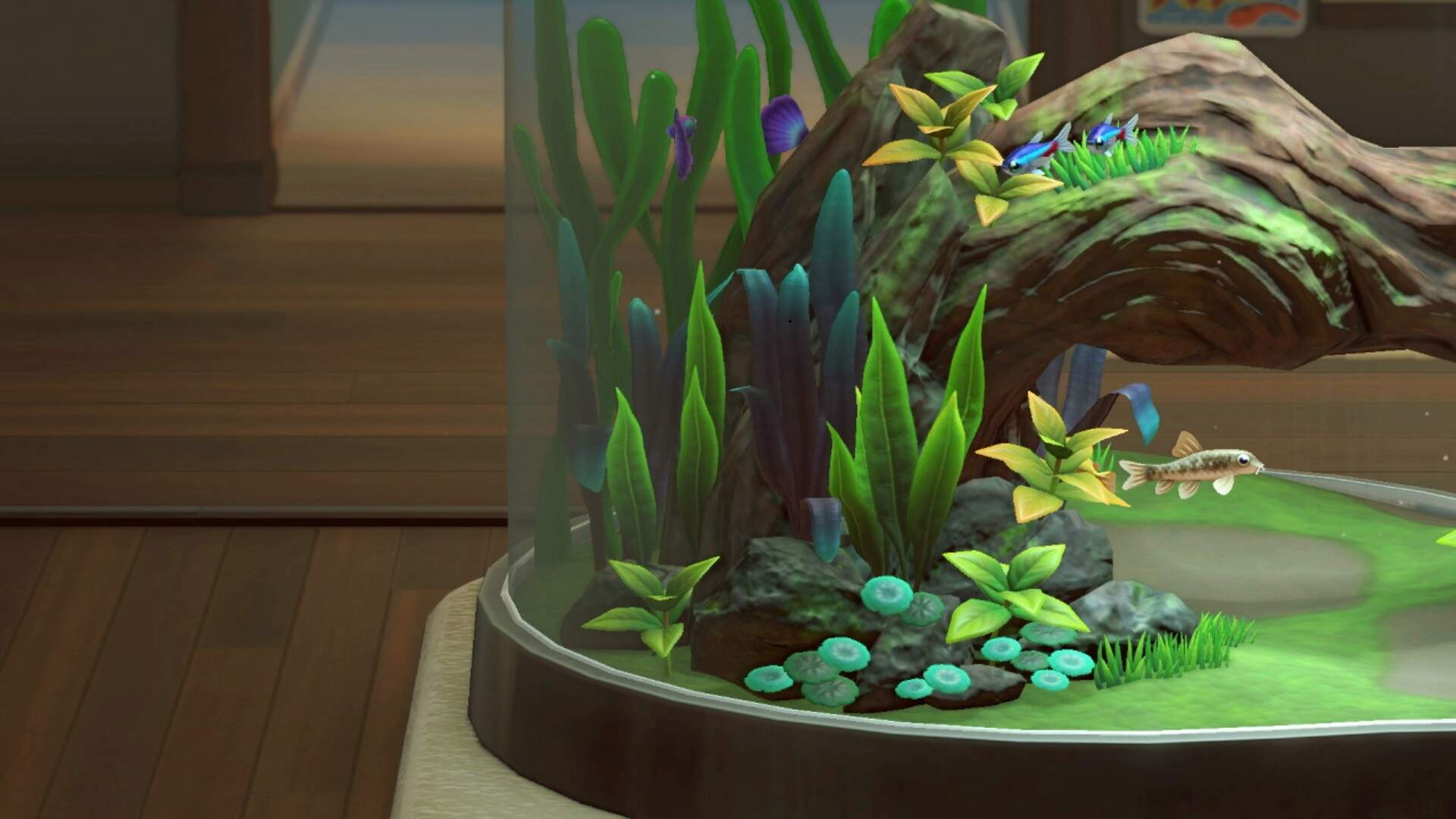 Animal Crossing New Horizons: How to Catch a Nibble Fish