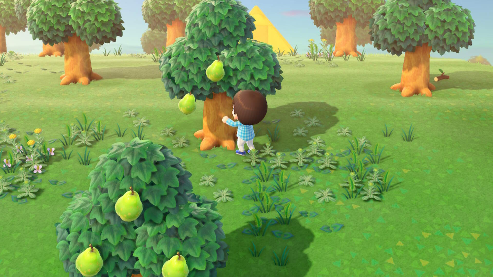 Animal Crossing New Horizons: What Fruits Can You Get On Your Island?
