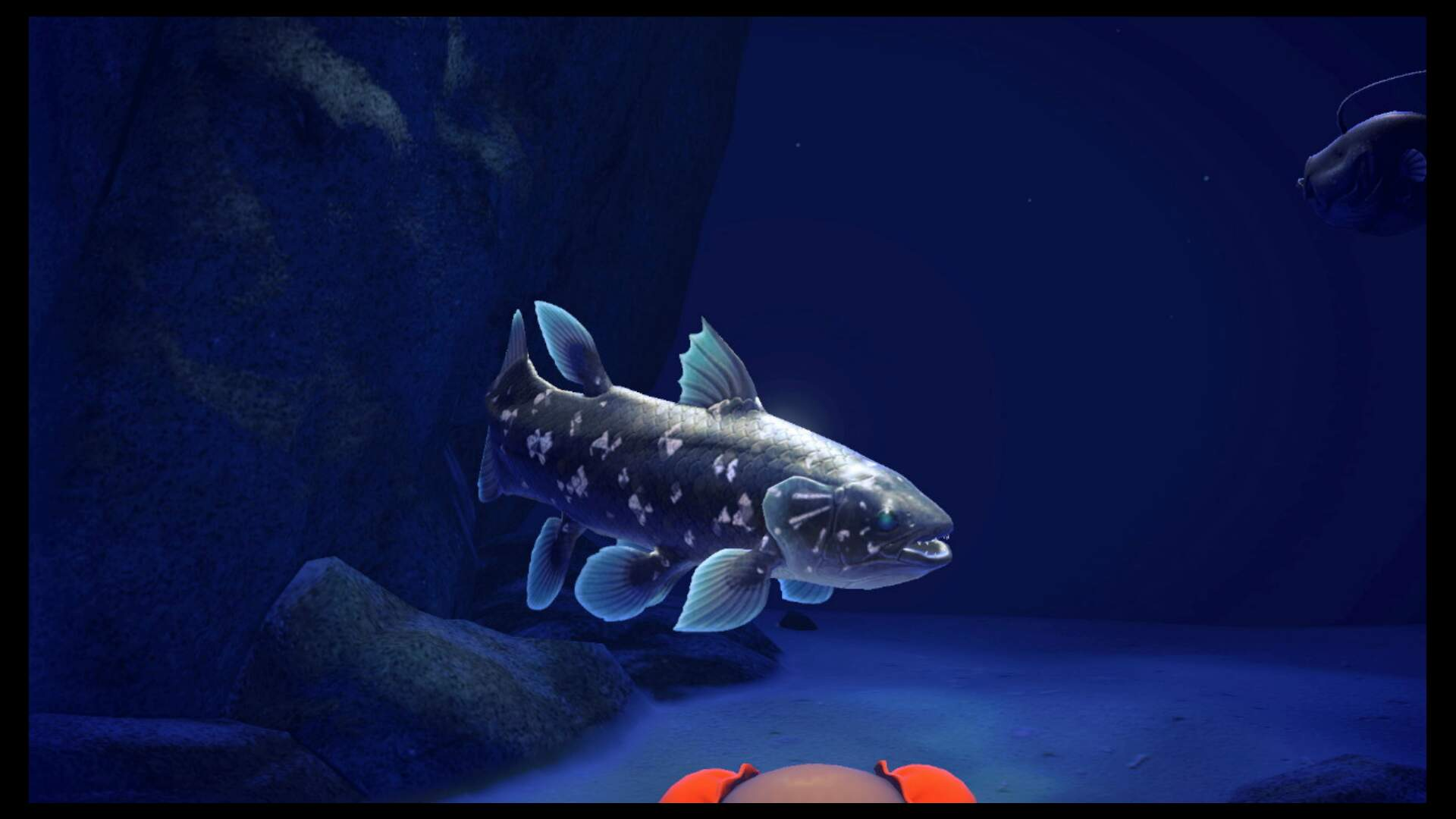 Animal Crossing New Horizons: How to Catch a Coelacanth