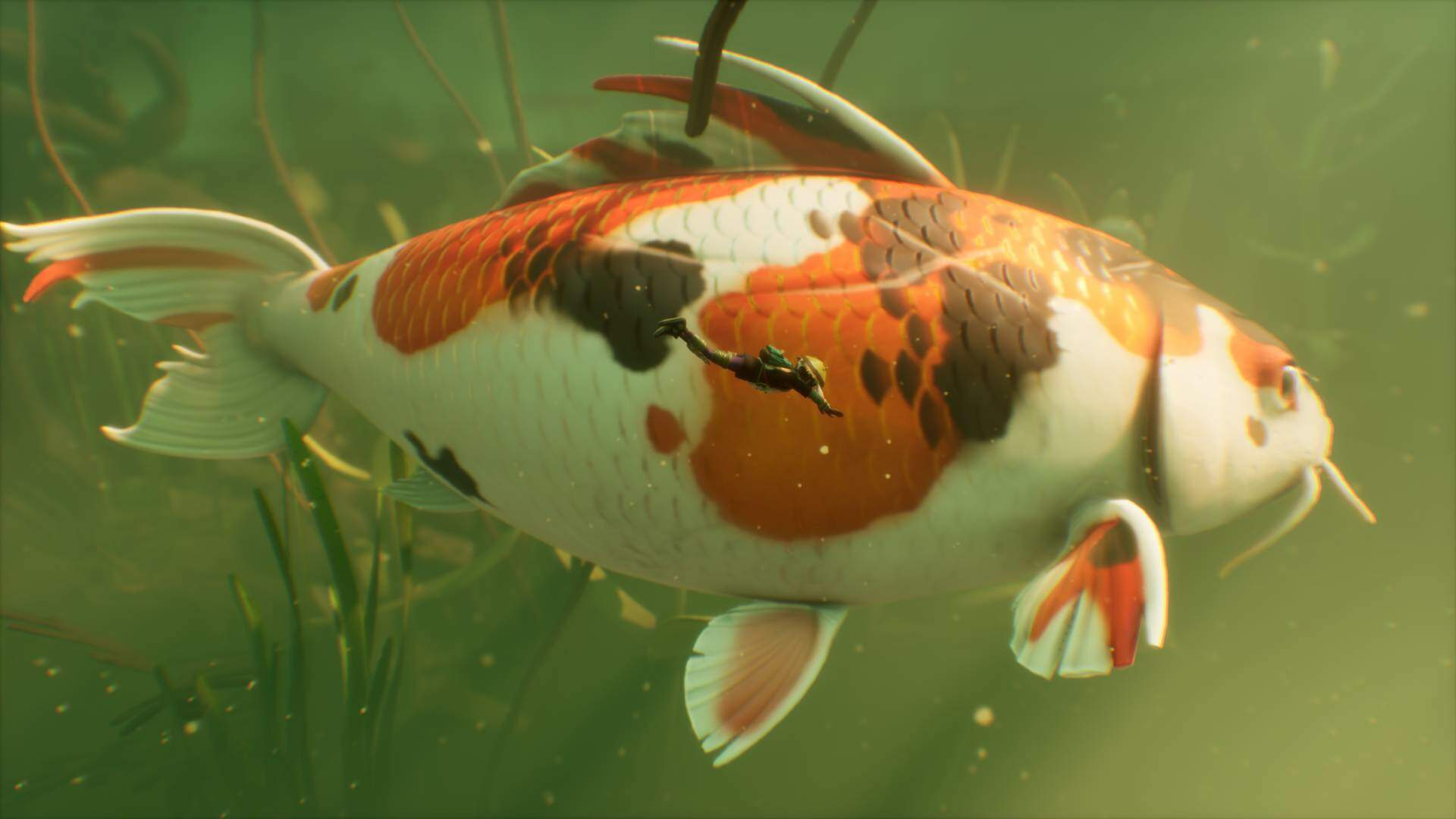 Grounded's Next Update Adds an Intimidating Koi Fish to the Pond