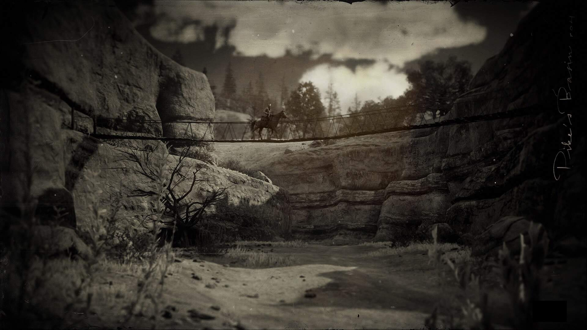 Red Dead Online: Legendary Winyan Bison Location