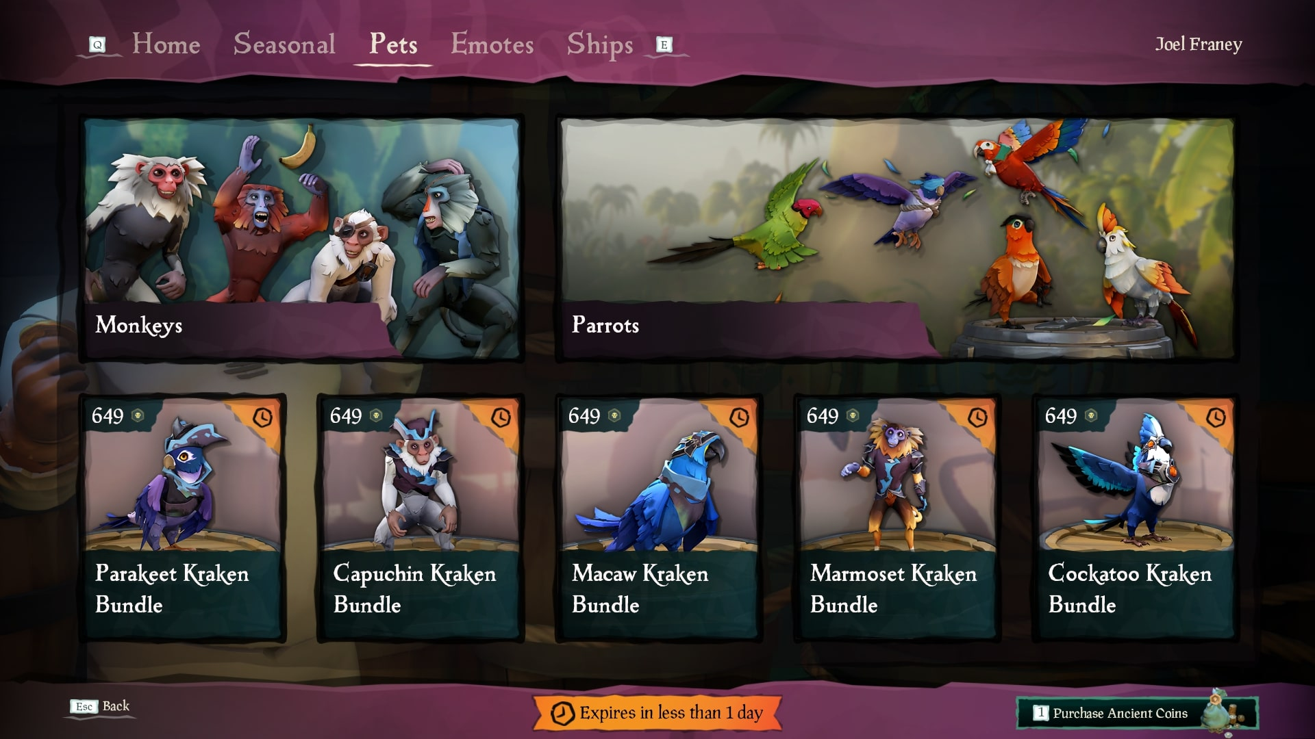 Sea Of Thieves How To Get And Use Pets Usgamer