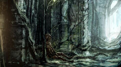 Dark Souls 2 Guide: Brightstone Cove Tseldora Part 1: Prowling Magus and the Congregation