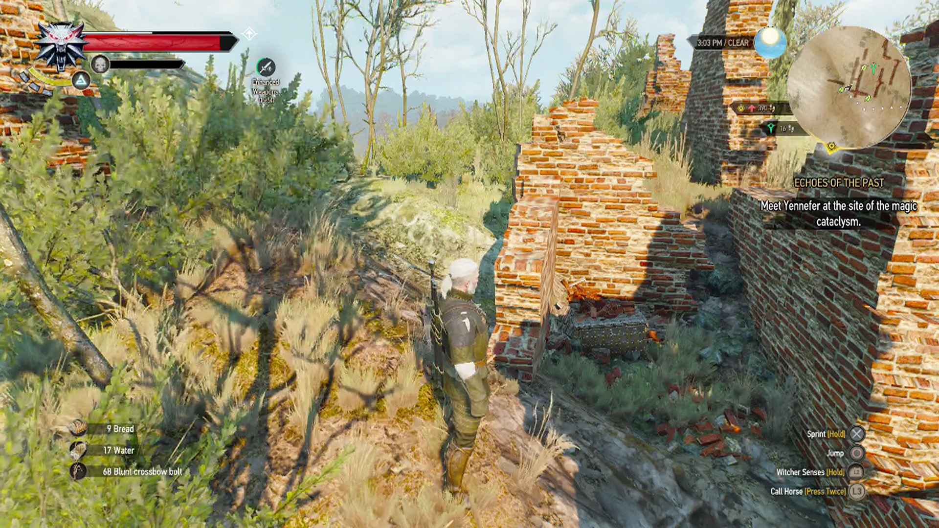 how to find thaler witcher 3
