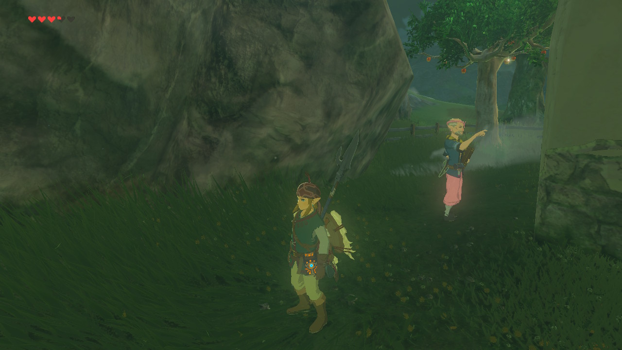 zelda breath of the wild how to buy a house and